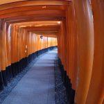 visitar el santuario Fushimi Inari